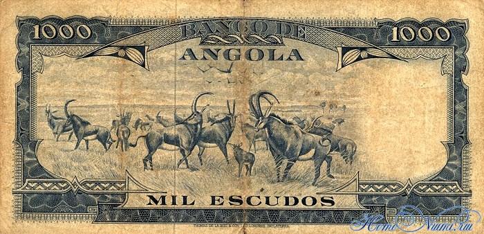 http://homonumi.ru/pic/n/Angola/P-96-b.jpg