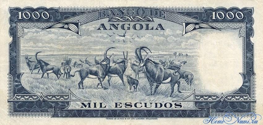 http://homonumi.ru/pic/n/Angola/P-98-b.jpg