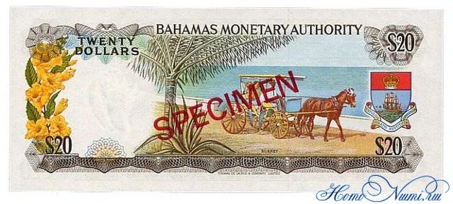 http://homonumi.ru/pic/n/Bahamas/P-31s-b.jpg