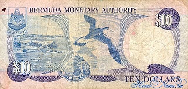 http://homonumi.ru/pic/n/Bermuda/P-36-b.jpg