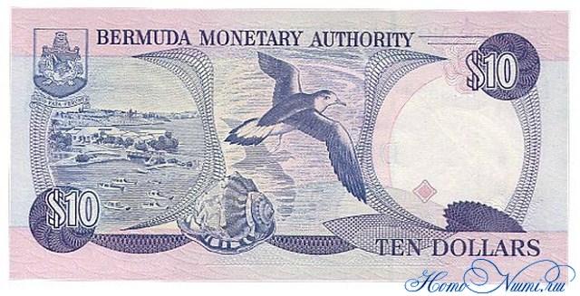 http://homonumi.ru/pic/n/Bermuda/P-42d-b.jpg