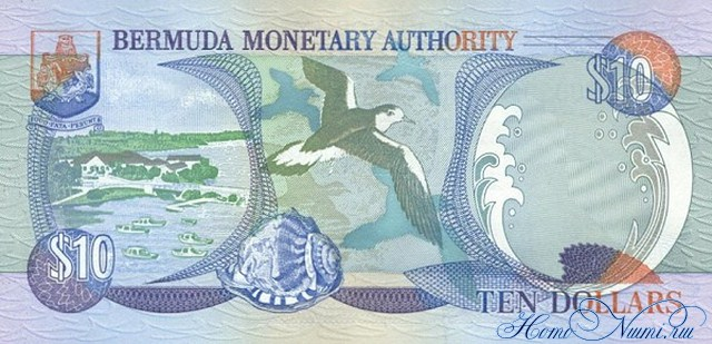 http://homonumi.ru/pic/n/Bermuda/P-52-b.jpg