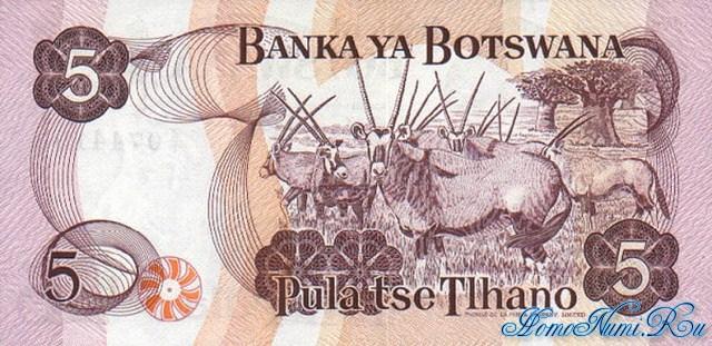http://homonumi.ru/pic/n/Botswana/P-3a(r)-b.jpg