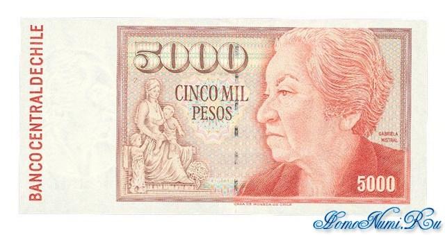 http://homonumi.ru/pic/n/Chile/P-155e-f.jpg