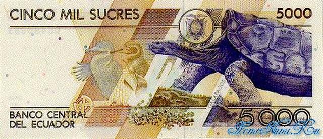 http://homonumi.ru/pic/n/Ecuador/P-128a-b.jpg
