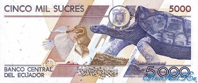http://homonumi.ru/pic/n/Ecuador/P-128ab-b.jpg