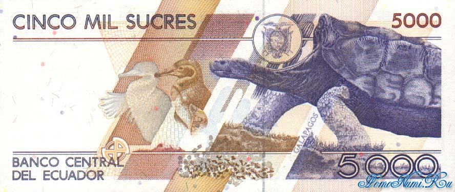 http://homonumi.ru/pic/n/Ecuador/P-128b-b.jpg