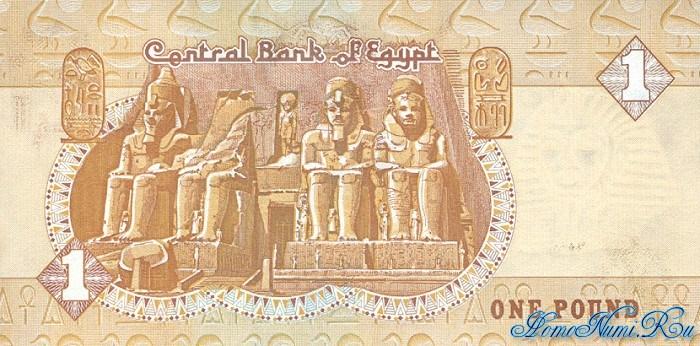 http://homonumi.ru/pic/n/Egypt/P-50cc-b.jpg
