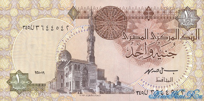http://homonumi.ru/pic/n/Egypt/P-50cc-f.jpg