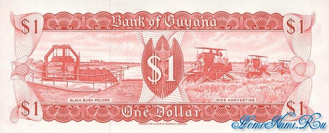 http://homonumi.ru/pic/n/Guyana/P-21f-b.jpg