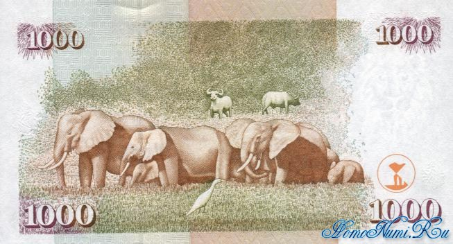 http://homonumi.ru/pic/n/Kenya/P-40e-b.jpg