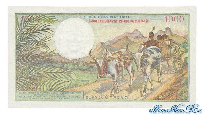 http://homonumi.ru/pic/n/Madagascar/P-59-b.jpg