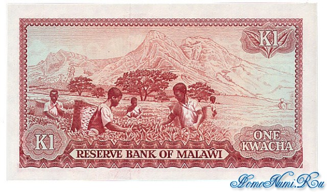 http://homonumi.ru/pic/n/Malawi/P-14d-b.jpg
