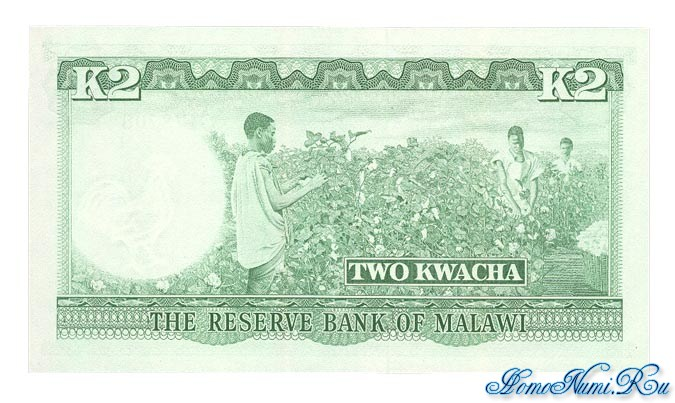 http://homonumi.ru/pic/n/Malawi/P-7-b.jpg