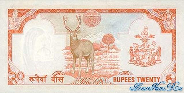 http://homonumi.ru/pic/n/Nepal/P-32-b.jpg