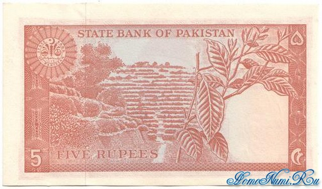 http://homonumi.ru/pic/n/Pakistan/P-20b-b.jpg