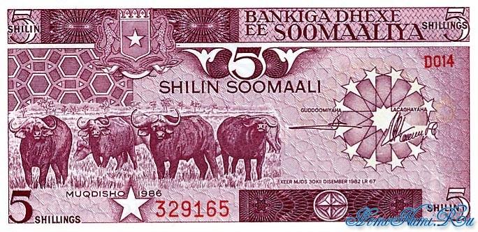 http://homonumi.ru/pic/n/Somali/P-31b-f.jpg