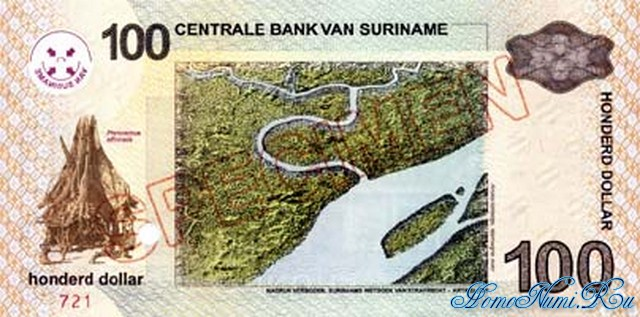 http://homonumi.ru/pic/n/Suriname/P-161(s)-b.jpg