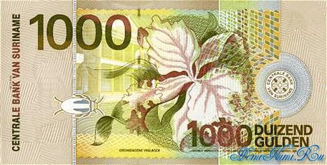 http://homonumi.ru/pic/n/Suriname/P-61-b.jpg