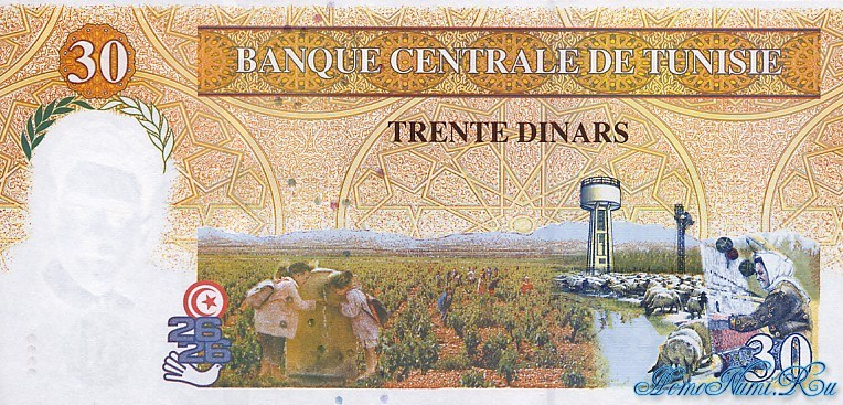 http://homonumi.ru/pic/n/Tunisia/P-89-b.jpg