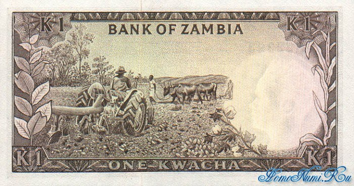http://homonumi.ru/pic/n/Zambia/P-10b-b.jpg