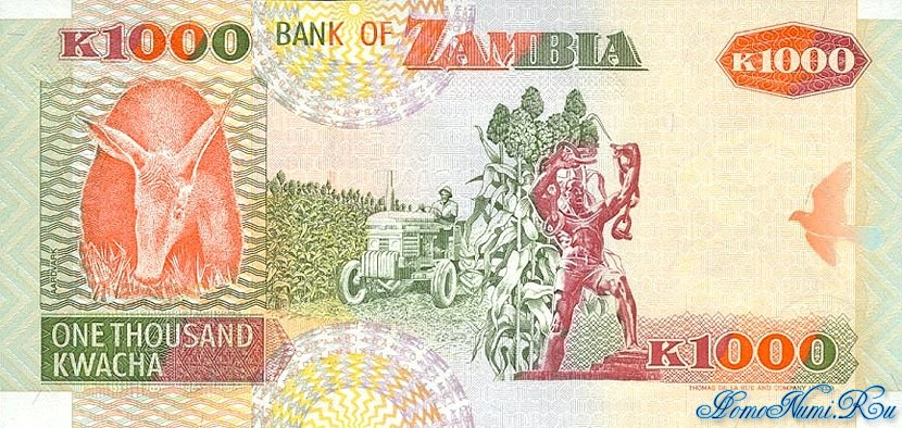 http://homonumi.ru/pic/n/Zambia/P-40b-b.jpg